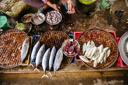 High angle view of vendor cleaning fish - BLEF09036