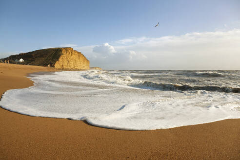 Scenic view of beach and waves - JUIF02290