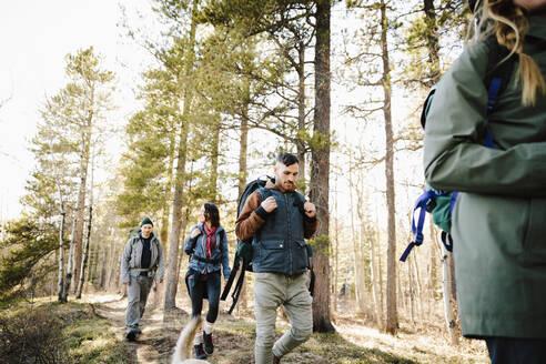 Friends hiking in woods - HEROF37137