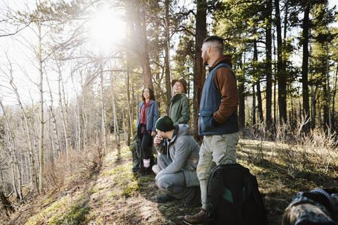 Friends hiking in sunny woods - HEROF37140