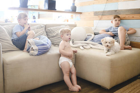 Russia, Moscow, Three brothers and cute curly dog sitting on the sofa and watching tv - EYAF00287