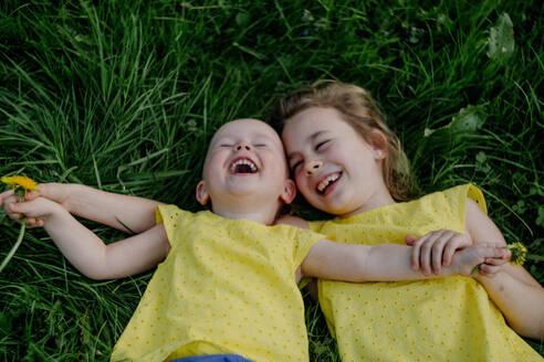 Die Schwester umarmen sich und liegen lachend auf dem Gras mit Pusteblumen in Köln beim Kinderfotoshooting outdoor aufgenommen Taraxacum sect. Ruderalia - OGF00031