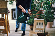 Low section of woman watering potted plant on stool at home - MASF13233