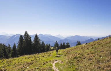 Full length rear view of man hiking on Schafberg peak during sunny day - GWF06171
