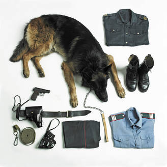 Organized police uniform and equipment with dog - BLEF09852