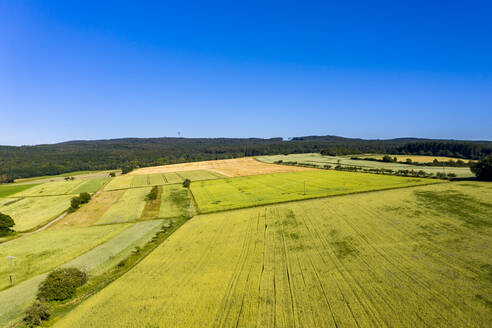Aerial view over grain fields, meadows and woods, Wetterau, Germany - AMF07197