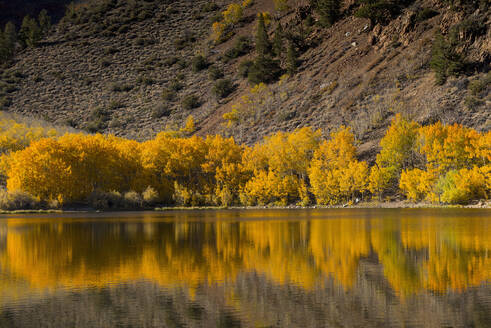 Autumn trees and hillside reflecting in lake - BLEF11384