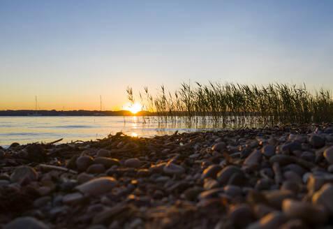 Sonnenutergang am Starnberger See, Fünfseenland, Oberbayern, Bayern, Deutschland, - LHF00657
