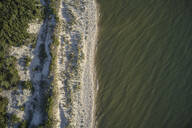 Aerial view of Savage Neck Dunes Natural Area Preserve, Virginia, USA - BCDF00417