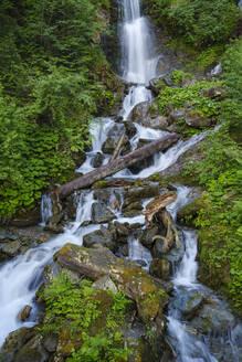 Wasserfall am Kaltenbach an der Zillertaler Höhenstraße, Kaltenbach, Zillertal, Tirol, Österreich - SIEF08783