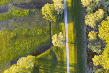 Fields and meadows at the Isar river estuary near Deggendorf, Lower Bavaria, Germany - SIEF08814