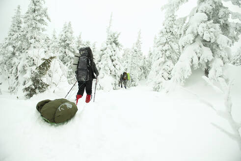 Caucasian hikers walking in snowy forest - BLEF12065