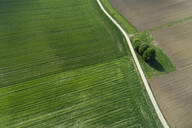 Aerial view of rural road through agricultural fields. Franconia, Bavaria, Germany - RUEF02264