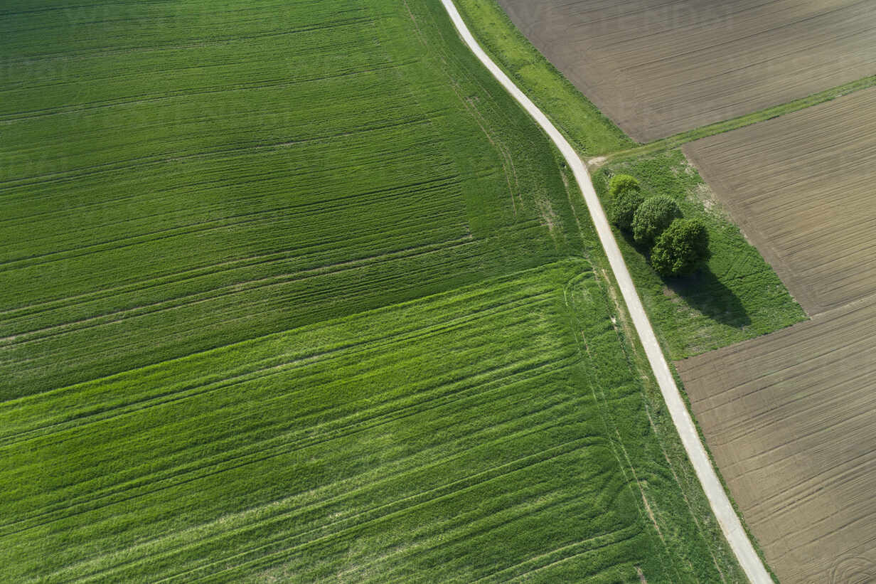 Aerial view of rural road through agricultural fields. Franconia, Bavaria, Germany - RUEF02264 - Martin Rügner/Westend61
