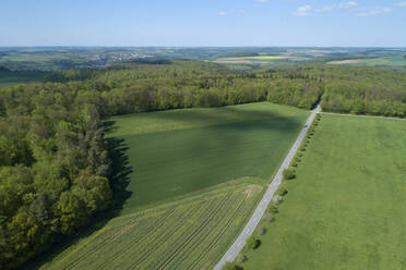 Aerial view of road through agricultural fields and forest, Franconia, Bavaria, Germany - RUEF02276