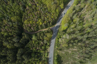 Aerial view of road through forest, springtime, Steigerwald, Franconia, Bavaria, Germany - RUEF02288