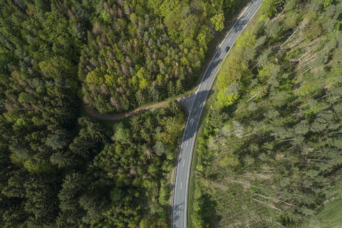 Aerial view of road through forest, springtime, Steigerwald, Franconia, Bavaria, Germany - RUEF02288