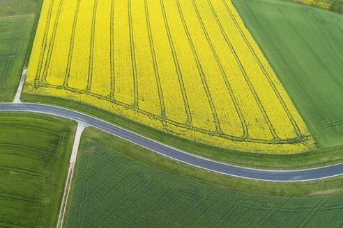 Abstract aerial view of rural road through agricultural fields with oilseed rape field and green wheat field, Franconia, Bavaria, Germany - RUEF02294