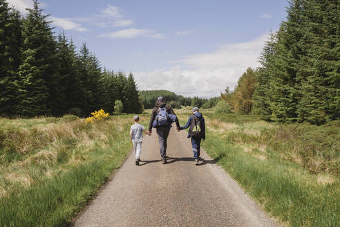 Back view of father walking hand in hand with his sons on country road, Cairngorms, Scotland, UK - NMS00328