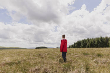 Back view of boy standing on a meadow watching clouds, Cairngorms, Scotland, UK - NMS00331