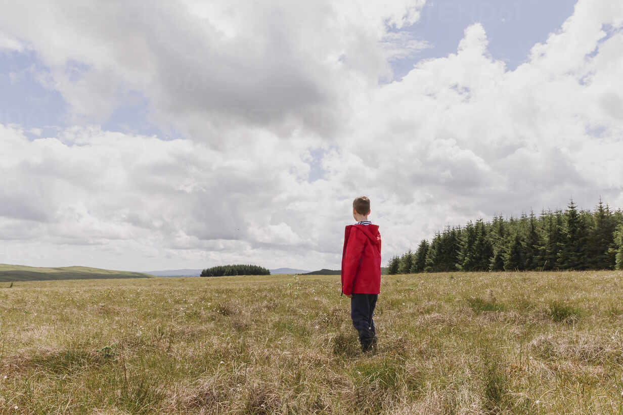 Back view of boy standing on a meadow watching clouds, Cairngorms, Scotland, UK - NMS00331 - Nicole Matthews/Westend61