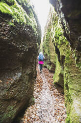 Hiker on trail through narrow gorge, Drachenschlucht, Thuringian Forest, Eisenach, Germany - GWF06183