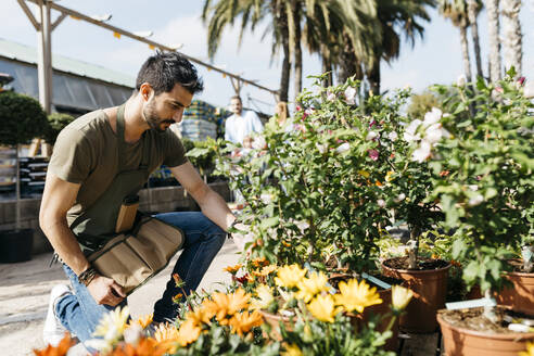 Spain, Tarragona. A worker in a garden center placing the leaves of a plant well - JRFF03456