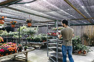 Worker in a garden center pushing a cart with plants - JRFF03471