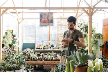 Worker in a garden center holding a maintenance product for cacti - JRFF03483