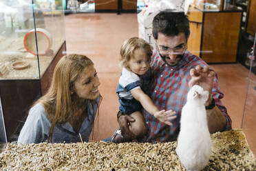 Happy family looking at rabbit in a pet shop - JRFF03498