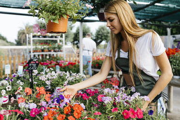 Female worker in a garden center caring for flowers - JRFF03522