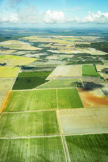 Aerial view of cultivated green fields in Queensland, Australia - GEMF03003