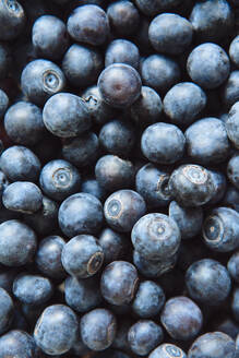 Close up of pile of blueberries - BLEF12434