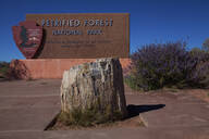 Petrified stump in front of Petrified Forest National Park sign, Arizona, United States - BLEF13070