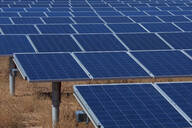 Close up of field of solar panels - BLEF13073