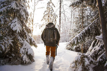 Mixed race man walking in snowy forest - BLEF13395