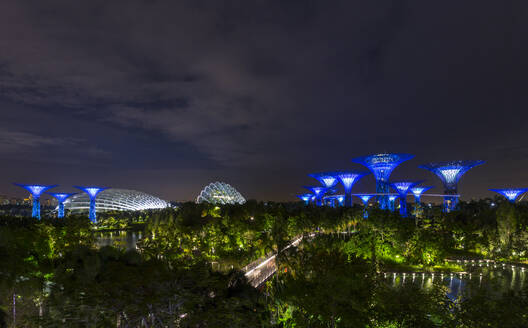 Gardens by the Bay with Supertree Grove and skywalk at night, Singapore - HSIF00722