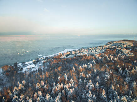 Aerial view of a house surrounded by forest on the coast in Estonia during winter. - AAEF00889