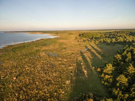 Aerial view of coastline on Island Vormsi, Estonia - AAEF00934
