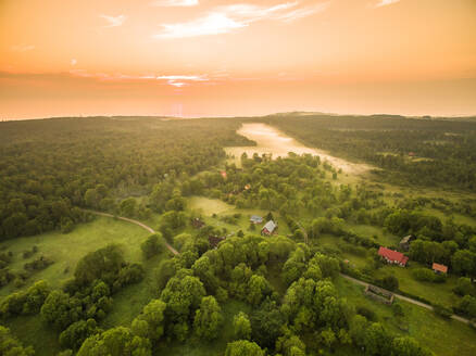 Aerial view of houses in foggy forest in countryside of Estonia at sunset - AAEF00979