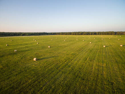 Aerial view of straw bales in meadow in estonian countryside - AAEF00988