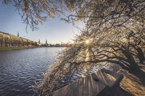 Binnenalster lake against clear sky during springtime, Hamburg, Germany - KEBF01287