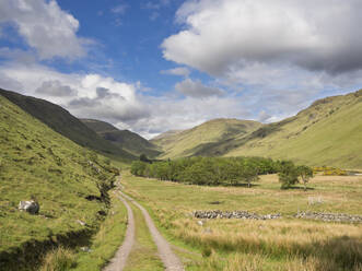Scenic view of grassy landscape against cloudy sky during sunny day, Scotland, UK - HUSF00061