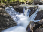 High angle View of river Naab in forest, Scotland, UK - HUSF00070