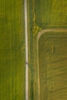 Aerial view of a car driving on a straight road surrounded by farmland in Estonia countryside. - AAEF02052