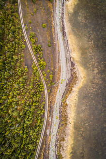 Aerial view of an empty road surrounded by nordic forest and coast of Island Vormsi, Estonia - AAEF02055