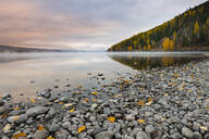 Sunrise on the shore of Lake McDonald, Glacier National Park, Montana, United States of America, North America - RHPLF00194