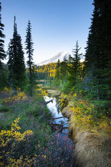 Reflection Lake, Mount Rainier National Park, Washington State, United States of America, North America - RHPLF00209