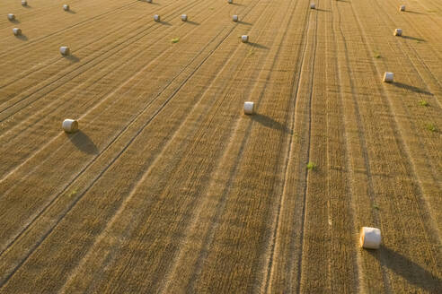 Full frame shot of hay bales at Friuli-venezia Giulia - MAUF02743
