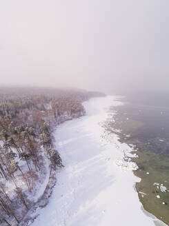 Aerial view of the snowy misty coast of Muraste in Estonia - AAEF02495